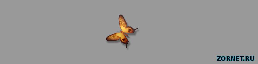 Бабочка сайта uCoz